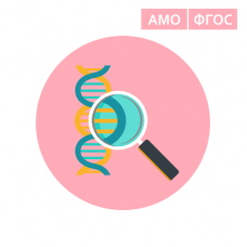 Разработка урока биологии по технологии активных методов обучения в условиях внедрения ФГОС