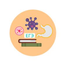 Подготовка к ОГЭ по биологии