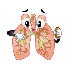 """курс повышения квалификации """"Заболевания органов дыхания у детей"""""""