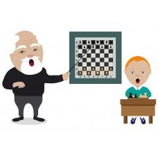 """Тренер-преподаватель - программа """"Организация деятельности тренера – преподавателя по шахматам"""", 520 часов"""