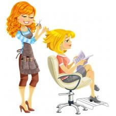 Парикмахер, 3 разряд - программа профессиональной подготовки по профессии «Парикмахер»