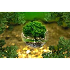 """курс повышения квалификации """"Экологическое образование для устойчивого развития в соответствии с ФГОС ДО"""""""