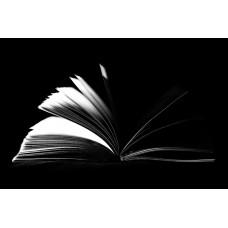 """электронный курс """"Основы работы в MS Publisher"""""""