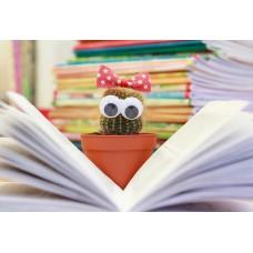 Приемы, задания и универсальные учебные действия