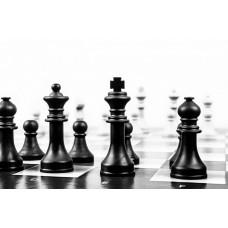 Основы преподавания шахмат