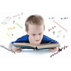 Деятельностная направленность на уроках математики