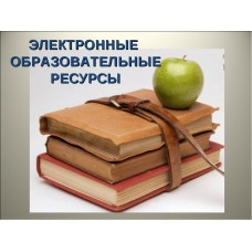 Электронные образовательные ресурсы в практике учителя