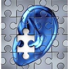 Особенности обучения лиц с нарушением слуха