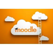Организация основных элементов и ресурсов в СДО Moodle