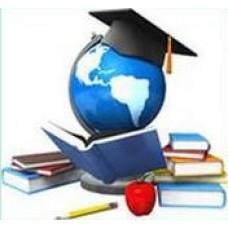 Деятельность организаций дополнительного образования детей в современных условиях
