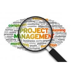 Управление проектами