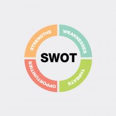 """курс дополнительного образования """"Технология SWOT-анализа для собственного развития"""""""