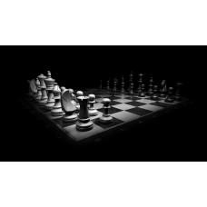 """курс дополнительного образования """"Шахматы"""""""