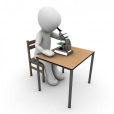 Исследовательское обучение: совмещаем науку и творчество