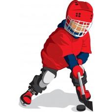 """Тренер по хоккею - программа """"Организация деятельности тренера по хоккею"""", 1000 часов"""