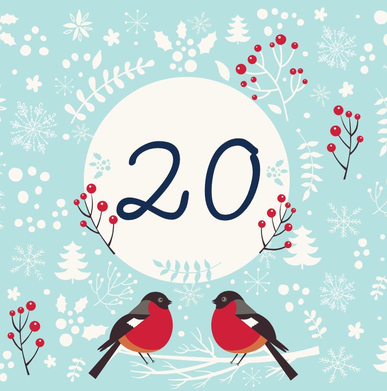 20 декабря - откройте сюрприз дня!