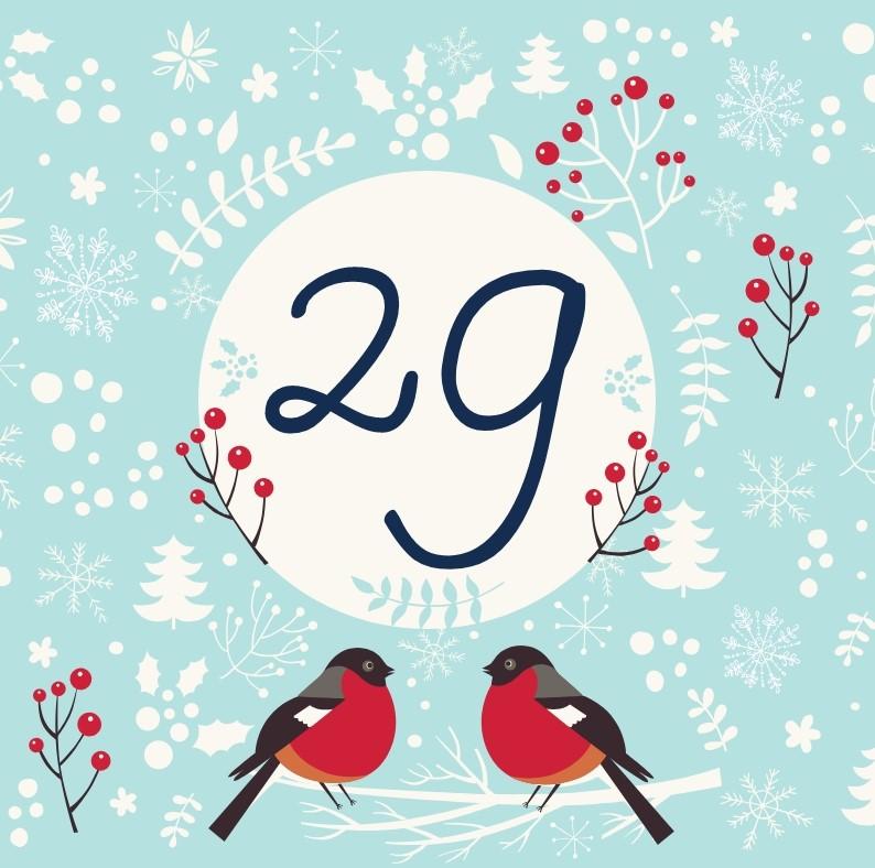 29 декабря - откройте сюрприз дня!